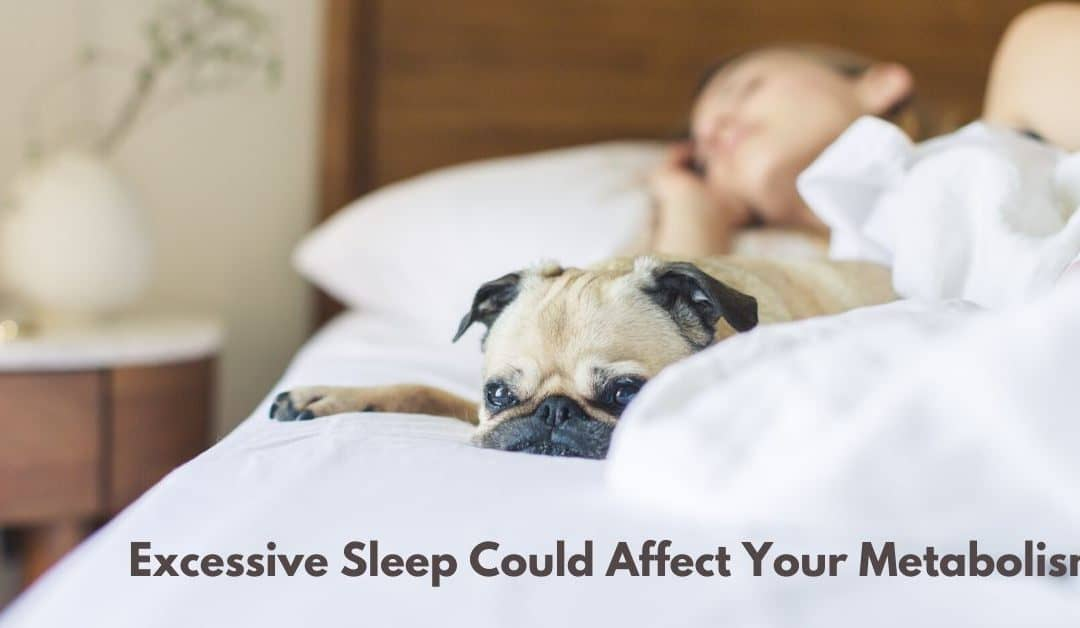 Excessive Sleep Could Affect Your Metabolism