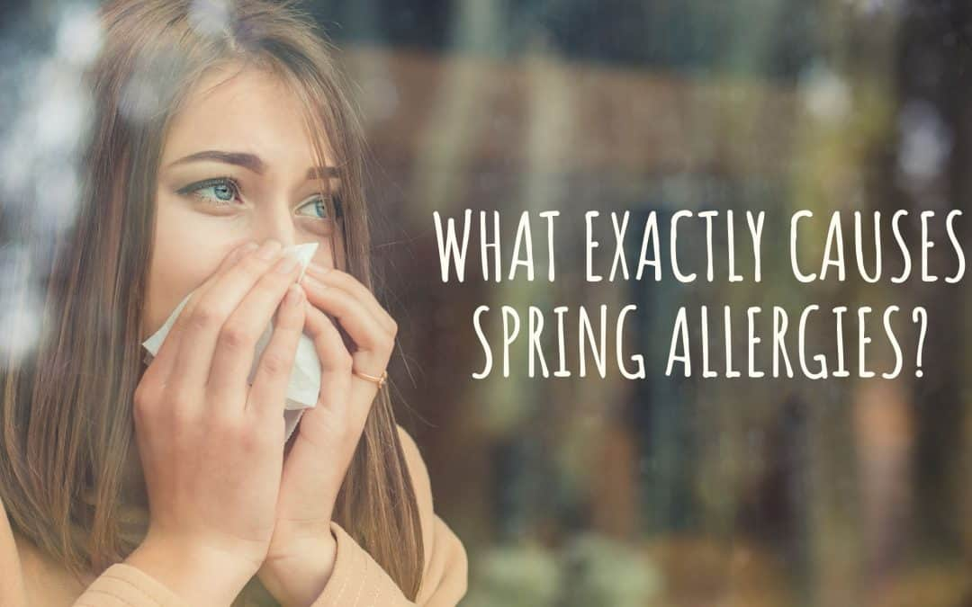 What Exactly Causes Spring Allergies?